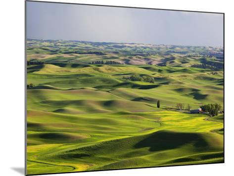 Palouse Farmland, Whitman County, Washington, USA-Jamie & Judy Wild-Mounted Photographic Print
