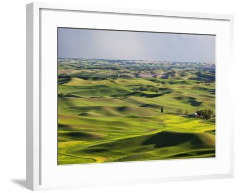 Palouse Farmland, Whitman County, Washington, USA-Jamie & Judy Wild-Framed Art Print
