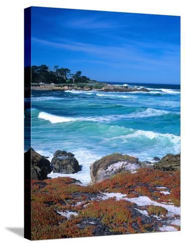 Beach, California, USA-John Alves-Stretched Canvas Print