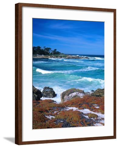 Beach, California, USA-John Alves-Framed Art Print