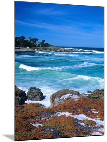 Beach, California, USA-John Alves-Mounted Photographic Print
