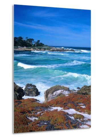 Beach, California, USA-John Alves-Metal Print
