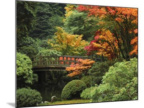 Moon Bridge in Autumn: Portland Japanese Garden, Portland, Oregon, USA-Michel Hersen-Mounted Photographic Print