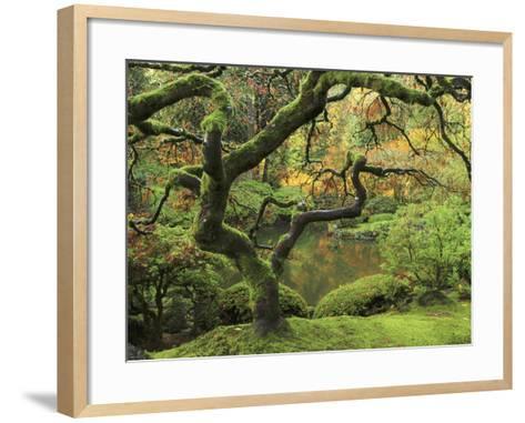 Portland Japanese Garden in Early Autumn: Portland Japanese Garden, Portland, Oregon, USA-Michel Hersen-Framed Art Print