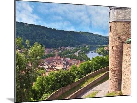 Wertheim Castle, Wertheim, Germany-Miva Stock-Mounted Photographic Print