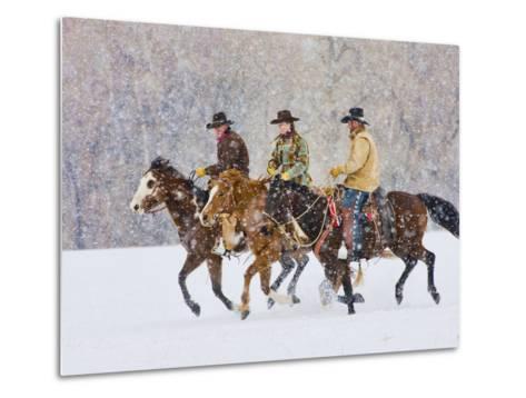 Cowboy Riding Horse, Shell, Wyoming, USA-Terry Eggers-Metal Print