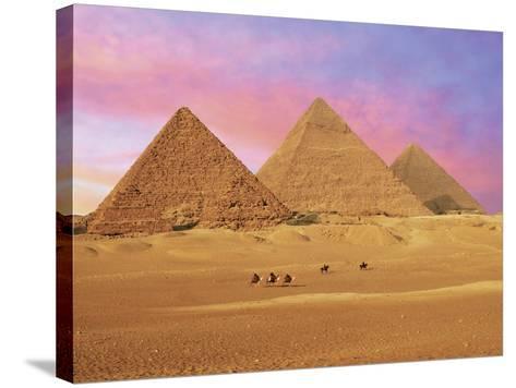 Pyramids at Sunset, Giza, Cairo, Egypt-Miva Stock-Stretched Canvas Print