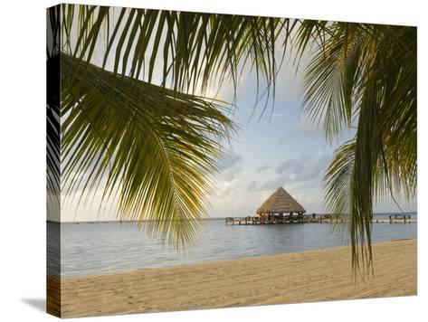 A Palapa and Sandy Beach, Placencia, Belize-William Sutton-Stretched Canvas Print