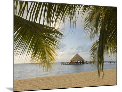 A Palapa and Sandy Beach, Placencia, Belize-William Sutton-Mounted Photographic Print