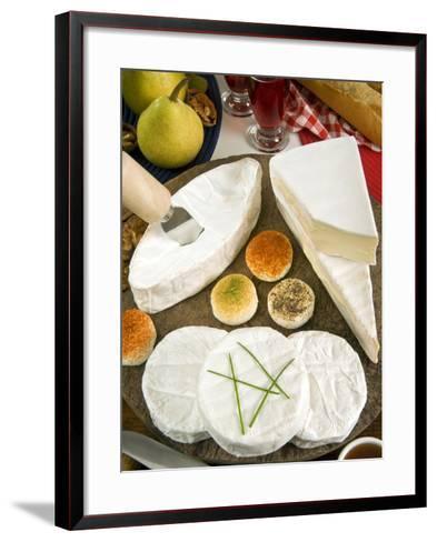 French Cheeses, France-Nico Tondini-Framed Art Print