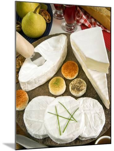 French Cheeses, France-Nico Tondini-Mounted Photographic Print