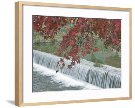 Waterfall, Arashiyama, Kyoto, Japan-Rob Tilley-Framed Art Print