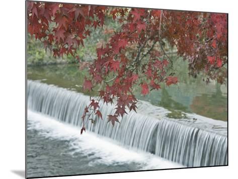 Waterfall, Arashiyama, Kyoto, Japan-Rob Tilley-Mounted Photographic Print