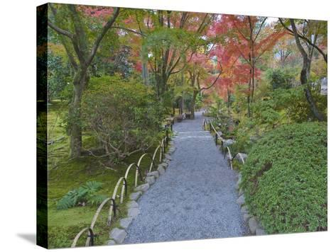 Tenryuji Temple Garden, Sagano, Arashiyama, Kyoto, Japan-Rob Tilley-Stretched Canvas Print
