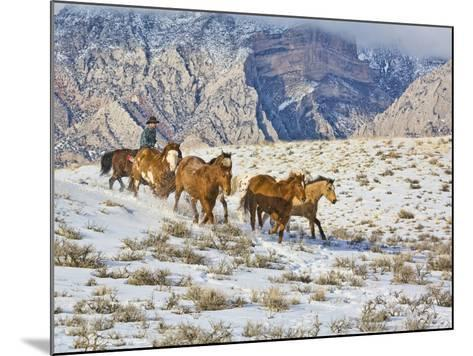 Horse Drive, Shell, Wyoming, USA-Terry Eggers-Mounted Photographic Print