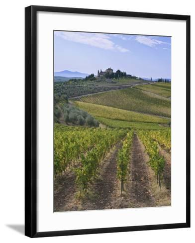 Vineyard, Chianti, Italy-Rob Tilley-Framed Art Print