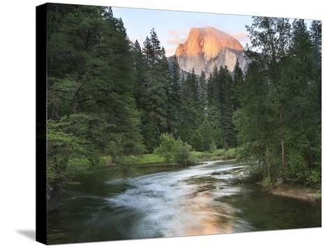 Half Dome with Sunset over Merced River, Yosemite, California, USA-Tom Norring-Stretched Canvas Print