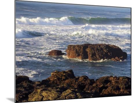 Incoming Tide at Yachats, Yachats, Oregon, USA-Michel Hersen-Mounted Photographic Print