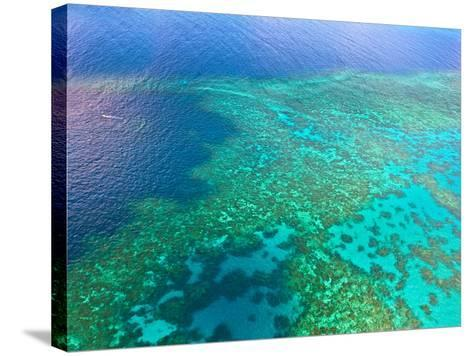 Aerial View of the Great Barrier Reef, Queensland, Australia-Miva Stock-Stretched Canvas Print