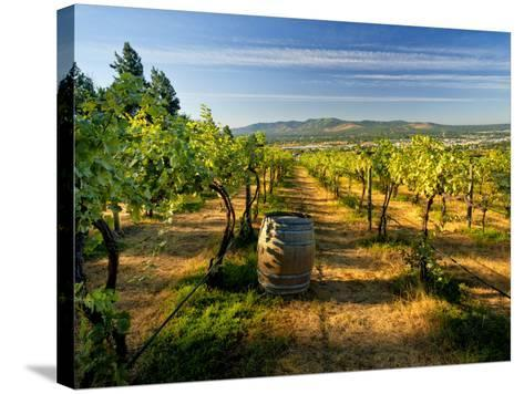 Arbor Crest Wine Cellars in Spokane, Washington, USA-Richard Duval-Stretched Canvas Print