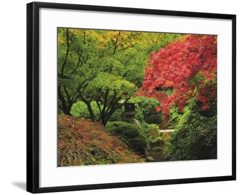 Portland Japanese Garden in Autumn, Portland, Oregon, USA-Michel Hersen-Framed Art Print