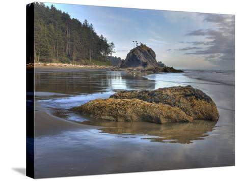 Low Tide, Olympic National Park, Washington, USA-Tom Norring-Stretched Canvas Print