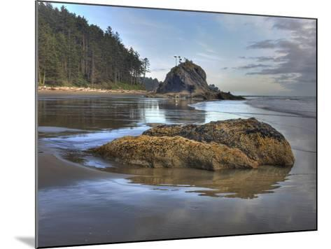 Low Tide, Olympic National Park, Washington, USA-Tom Norring-Mounted Photographic Print