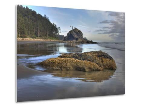 Low Tide, Olympic National Park, Washington, USA-Tom Norring-Metal Print