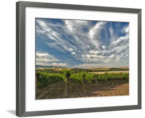 Vineyard of Walla Walla Vintners, Walla Walla, Washington, USA-Richard Duval-Framed Art Print