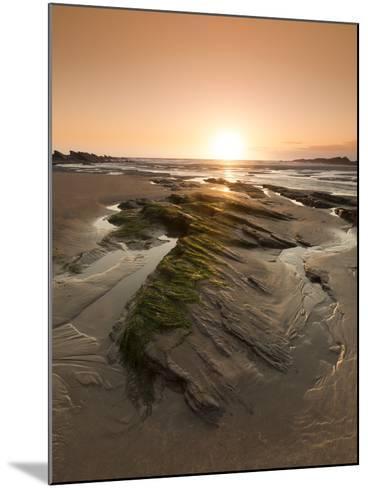 Seaside Rocks on Crackington Haven Beach at Sunset, Cornwall, England, United Kingdom, Europe-Ian Egner-Mounted Photographic Print