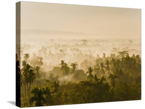 Early Morning Mist on the Kedu Plain at Sunrise from the Borobudur Temple, Java, Indonesia-Matthew Williams-Ellis-Stretched Canvas Print