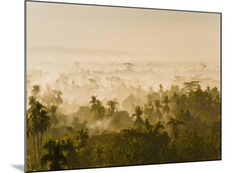 Early Morning Mist on the Kedu Plain at Sunrise from the Borobudur Temple, Java, Indonesia-Matthew Williams-Ellis-Mounted Photographic Print