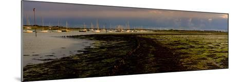 The Old Road, Emsworth, Chichester Harbour, West Sussex, England, United Kingdom, Europe-Giles Bracher-Mounted Photographic Print