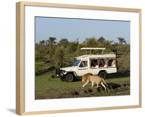 Lion (Panthera Leo) and Safari Vehicle, Masai Mara, Kenya, East Africa, Africa-Sergio Pitamitz-Framed Art Print
