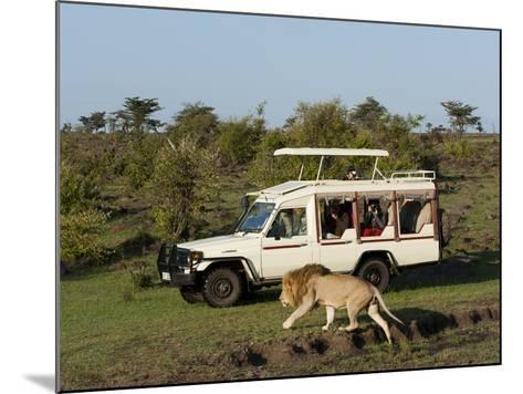 Lion (Panthera Leo) and Safari Vehicle, Masai Mara, Kenya, East Africa, Africa-Sergio Pitamitz-Mounted Photographic Print