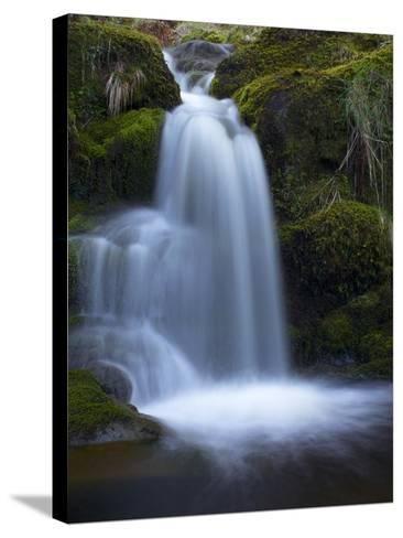 Waterfall, Glen Artney, Near Crieff, Perthshire, Scotland, United Kingdom, Europe-Jeremy Lightfoot-Stretched Canvas Print