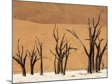 Dead Trees, Deadvlei, Sossusvlei, Namib Naukluft Park, Namib Desert, Namibia, Africa-Sergio Pitamitz-Mounted Photographic Print