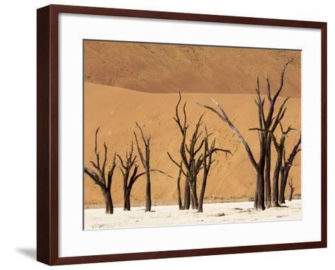 Dead Trees, Deadvlei, Sossusvlei, Namib Naukluft Park, Namib Desert, Namibia, Africa-Sergio Pitamitz-Framed Art Print
