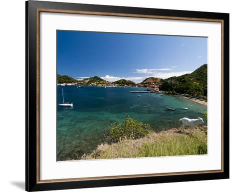 Le Bourg, Iles Des Saintes, Terre de Haut, Guadeloupe, French Caribbean, France, West Indies-Sergio Pitamitz-Framed Art Print