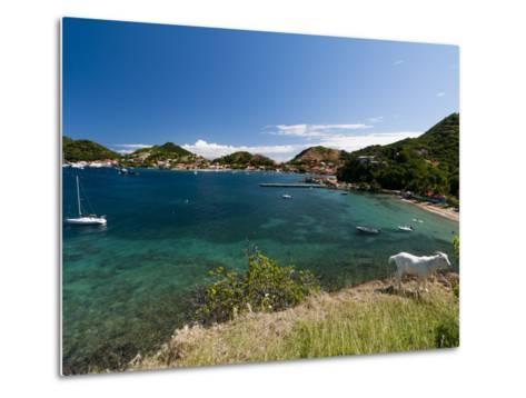 Le Bourg, Iles Des Saintes, Terre de Haut, Guadeloupe, French Caribbean, France, West Indies-Sergio Pitamitz-Metal Print