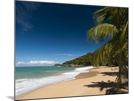 La Perle Beach, Deshaies, Basse-Terre, Guadeloupe, French Caribbean, France, West Indies-Sergio Pitamitz-Mounted Photographic Print