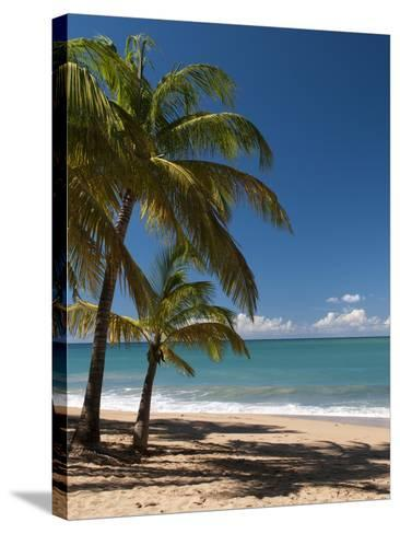 La Perle Beach, Deshaies, Basse-Terre, Guadeloupe, French Caribbean, France, West Indies-Sergio Pitamitz-Stretched Canvas Print