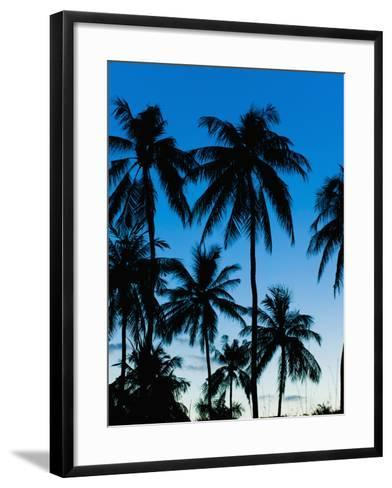 Palm Trees Silhouetted at Night, Sengiggi Beach, Lombok, Indonesia, Southeast Asia, Asia-Matthew Williams-Ellis-Framed Art Print