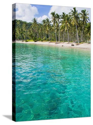 Palm Trees and Turquoise Water, Nippah Beach, Lombok, West Nusa Tenggara, Indonesia, Southeast Asia-Matthew Williams-Ellis-Stretched Canvas Print