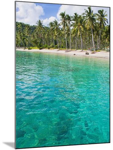 Palm Trees and Turquoise Water, Nippah Beach, Lombok, West Nusa Tenggara, Indonesia, Southeast Asia-Matthew Williams-Ellis-Mounted Photographic Print