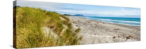 Panorama of Wild and Rugged Ross Beach, West Coast, South Island, New Zealand, Pacific-Matthew Williams-Ellis-Stretched Canvas Print