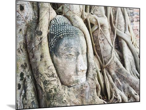 Stone Buddha Head in Fig Tree, Wat Mahathat, Ayutthaya City, UNESCO World Heritage Site, Thailand-Matthew Williams-Ellis-Mounted Photographic Print