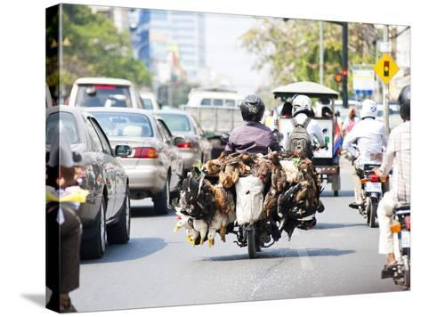 Live Chickens and Ducks Being Taken to Market on a Moped in Phnom Penh, Cambodia, Indochina-Matthew Williams-Ellis-Stretched Canvas Print
