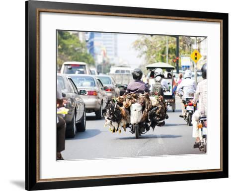 Live Chickens and Ducks Being Taken to Market on a Moped in Phnom Penh, Cambodia, Indochina-Matthew Williams-Ellis-Framed Art Print