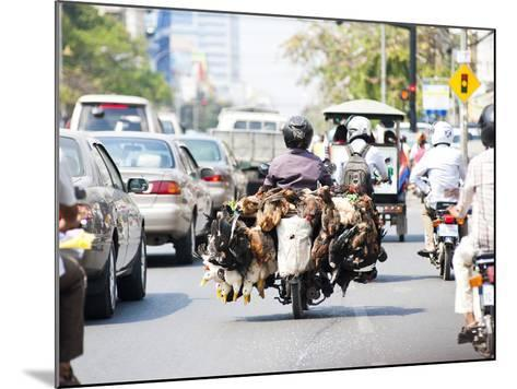 Live Chickens and Ducks Being Taken to Market on a Moped in Phnom Penh, Cambodia, Indochina-Matthew Williams-Ellis-Mounted Photographic Print
